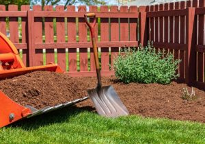 Commercial Lawn Care in Leduc.