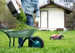 Lawn Mowing Edmonton 💯 Pudde's Lawn Care ✔️ Call Now